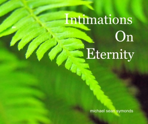 Intimations On Eternity; Collectors Cover michael sean symonds