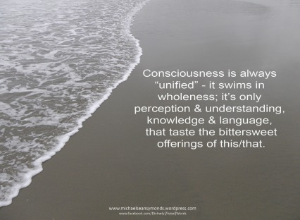 Consciousness Swims michael sean symonds