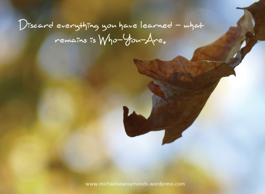 Discard Everything You Have Learned. michael sean symonds