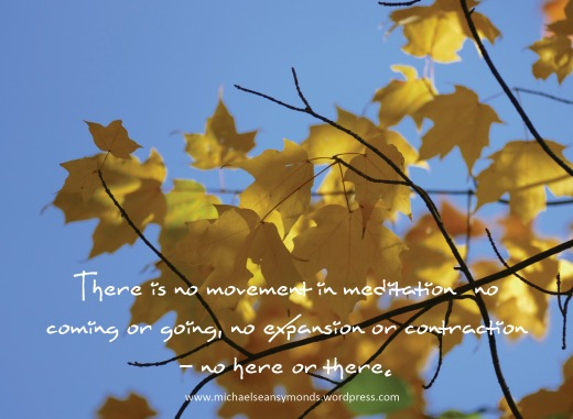 There Is No Here Or There In Meditation.michael sean symonds